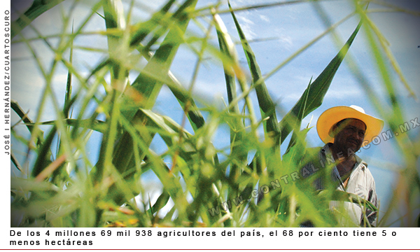agricultores-pais-600