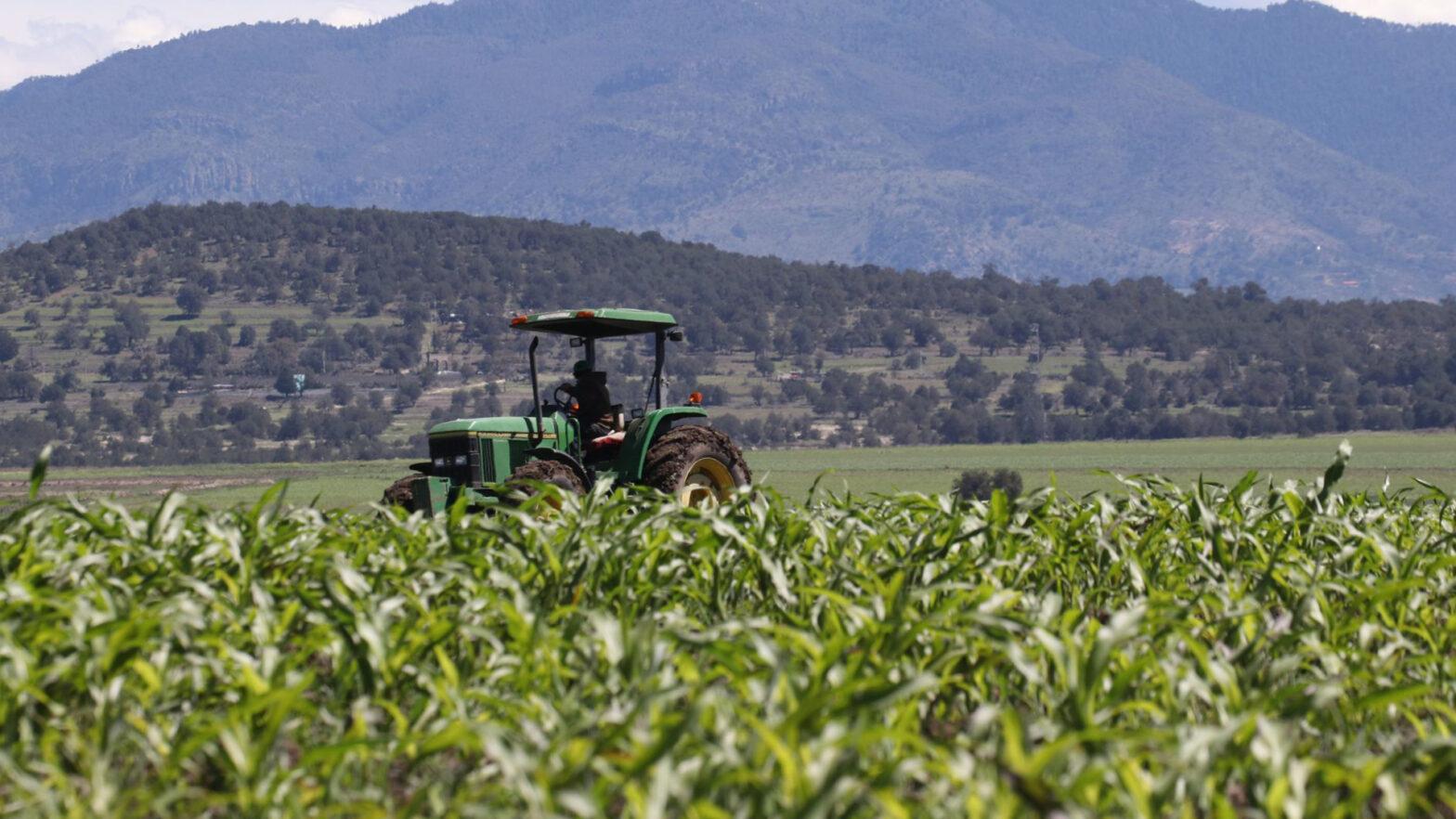 cosecha de alimentos en mexico
